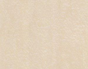 ALPI птичий глаз 10.02